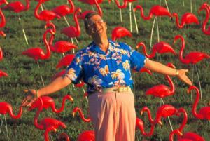 plastic-pink-flamingo-inventor_5